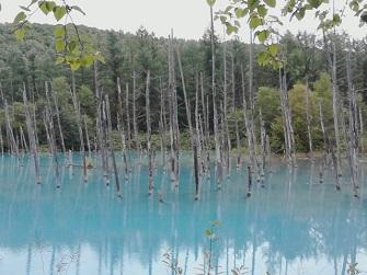 ①青い池.jpg